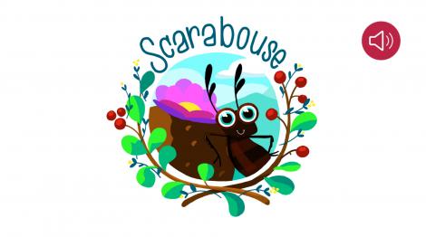 Scarabouse