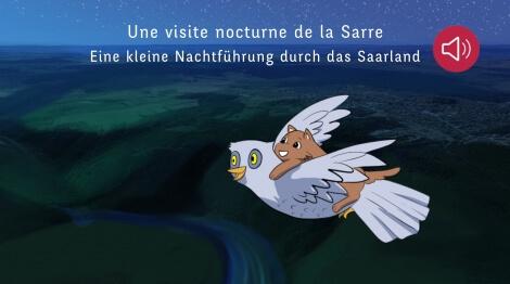 Une petite visite nocturne de la Sarre