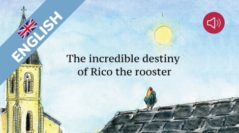 The incredible destiny of Rico the rooster
